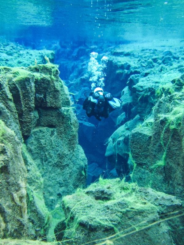 A SCUBA diver swims between two tectonic plates in Silfra Iceland. The walls of the Silfra crack are covered in neon green algae