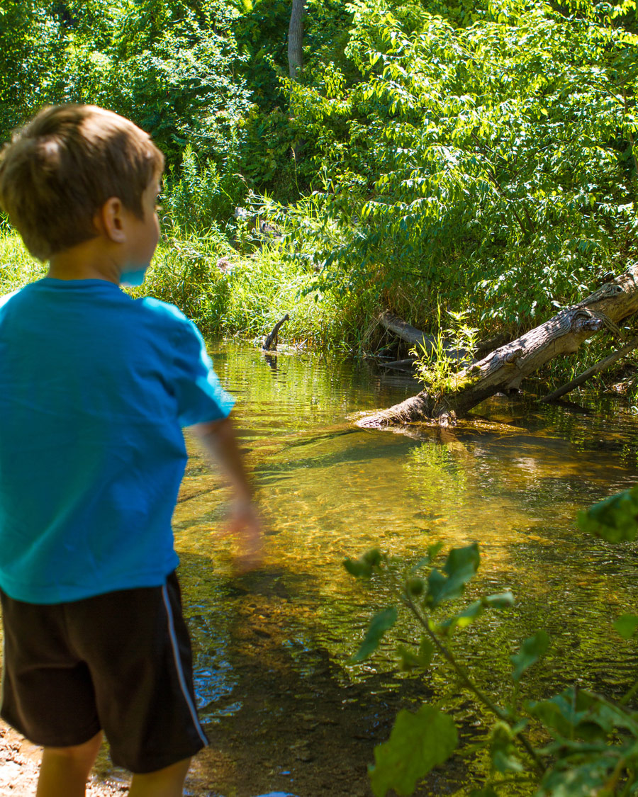 C-throws-stones-into-Limehouse-creek-at-Limehouse-Conservation-Area-in-Ontario