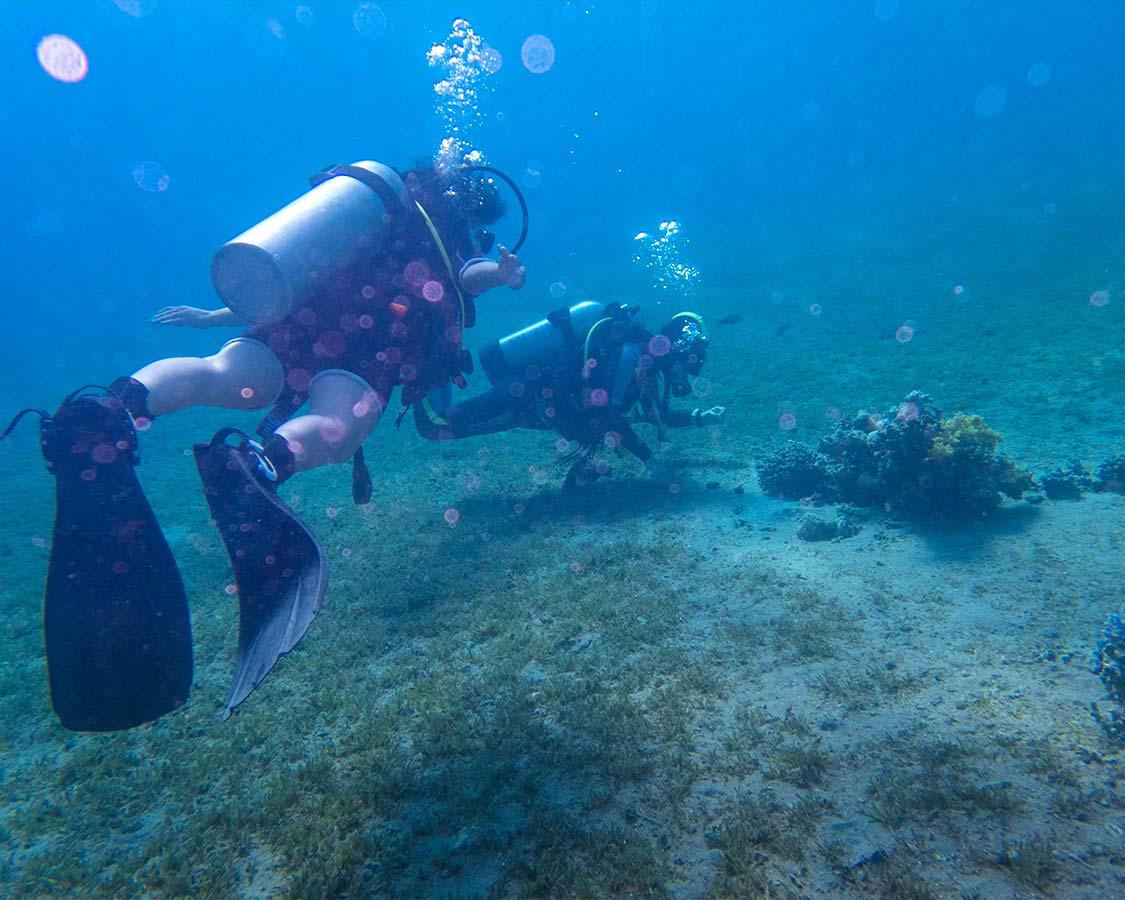 SCUBA Diving in the Red Sea in Jordan