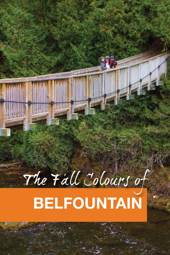 The Fall Colours of Belfountain - Pinterest