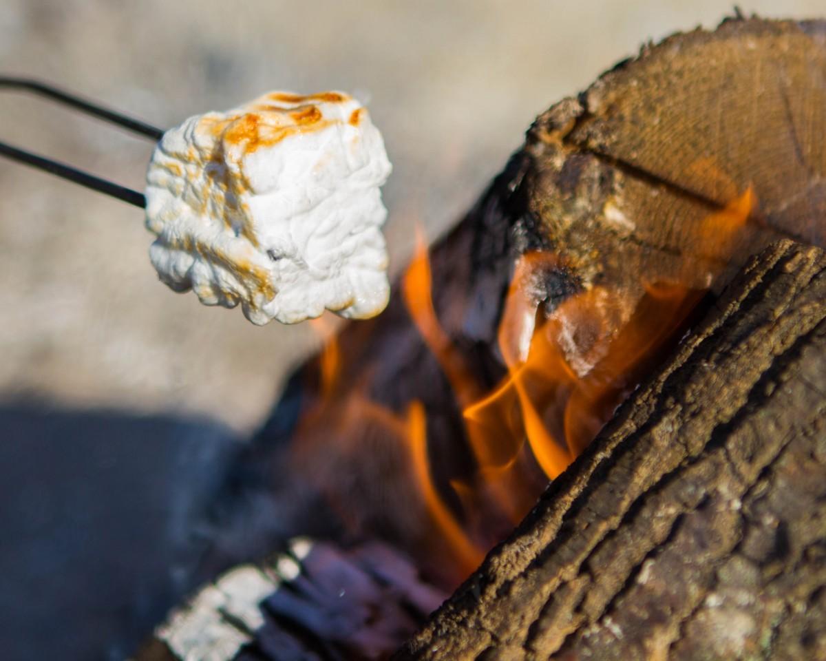 Toasting Icewine marshmallow roasting on an open fire during the Niagara Icewine Festival in Niagara-on-the-Lake