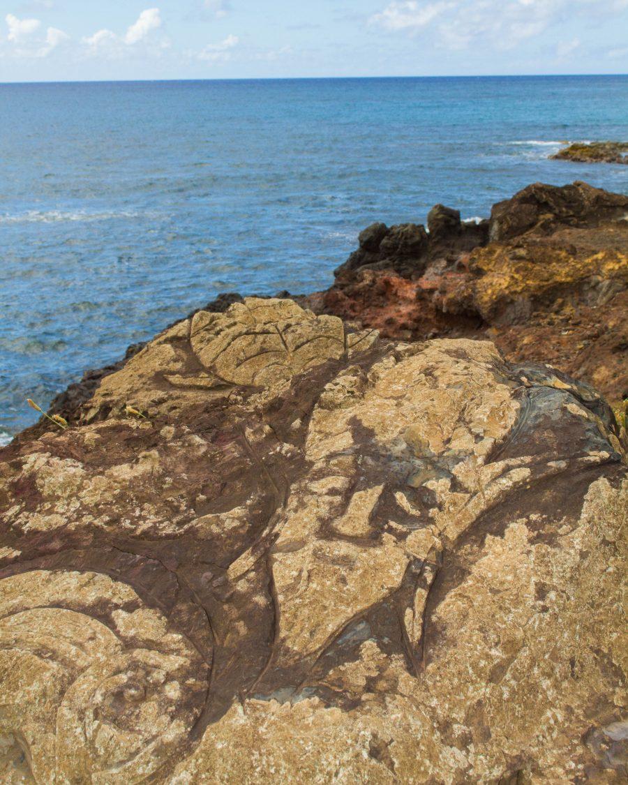 Petroglyphs depicting birdman deities and men with elaborate headpieces on Easter Island