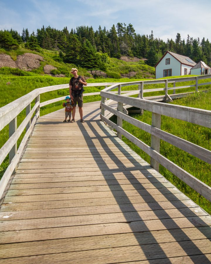Mom and child walk on the boardwalk on Bonaventure Island in the National Park of Bonaventure Island and Perce Rock