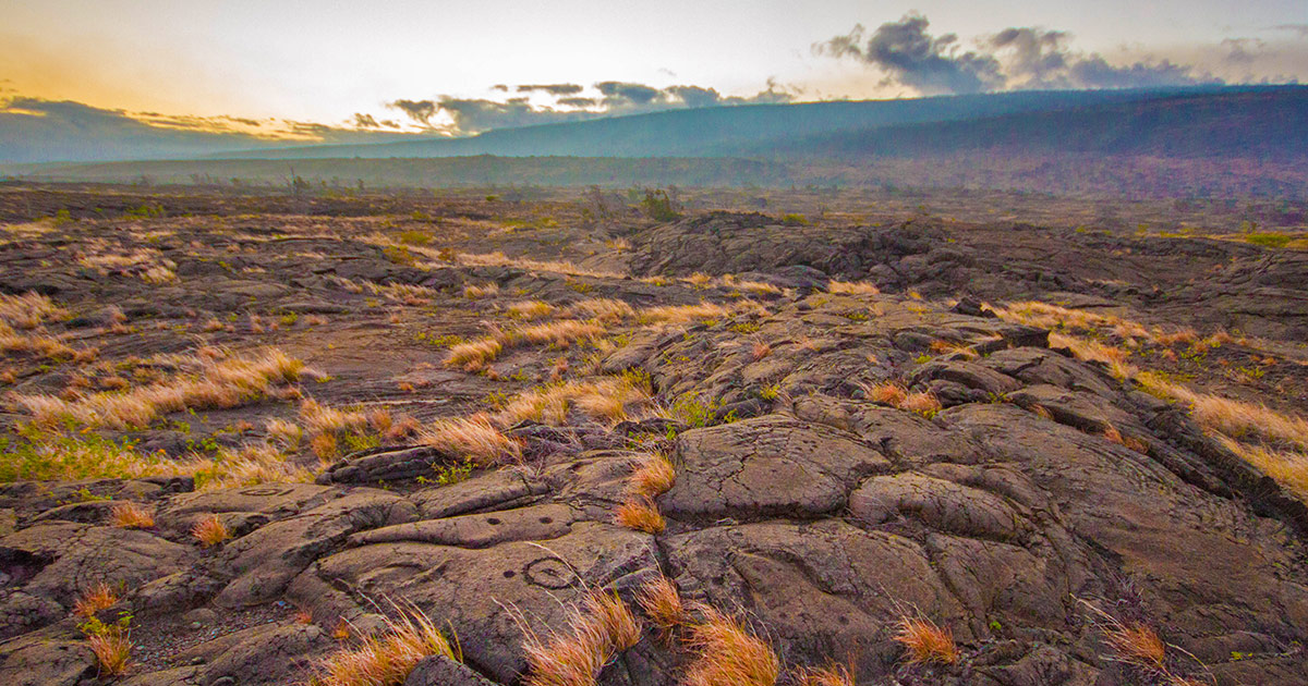 Hawaii Volcanoes National Park In a Day