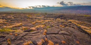 Petroglyphs are etched in the lava field at Volcanoes National Park in Hawaii
