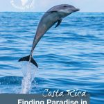 Costa Rica Finding Paradise on the Osa Peninsula - Pinterest