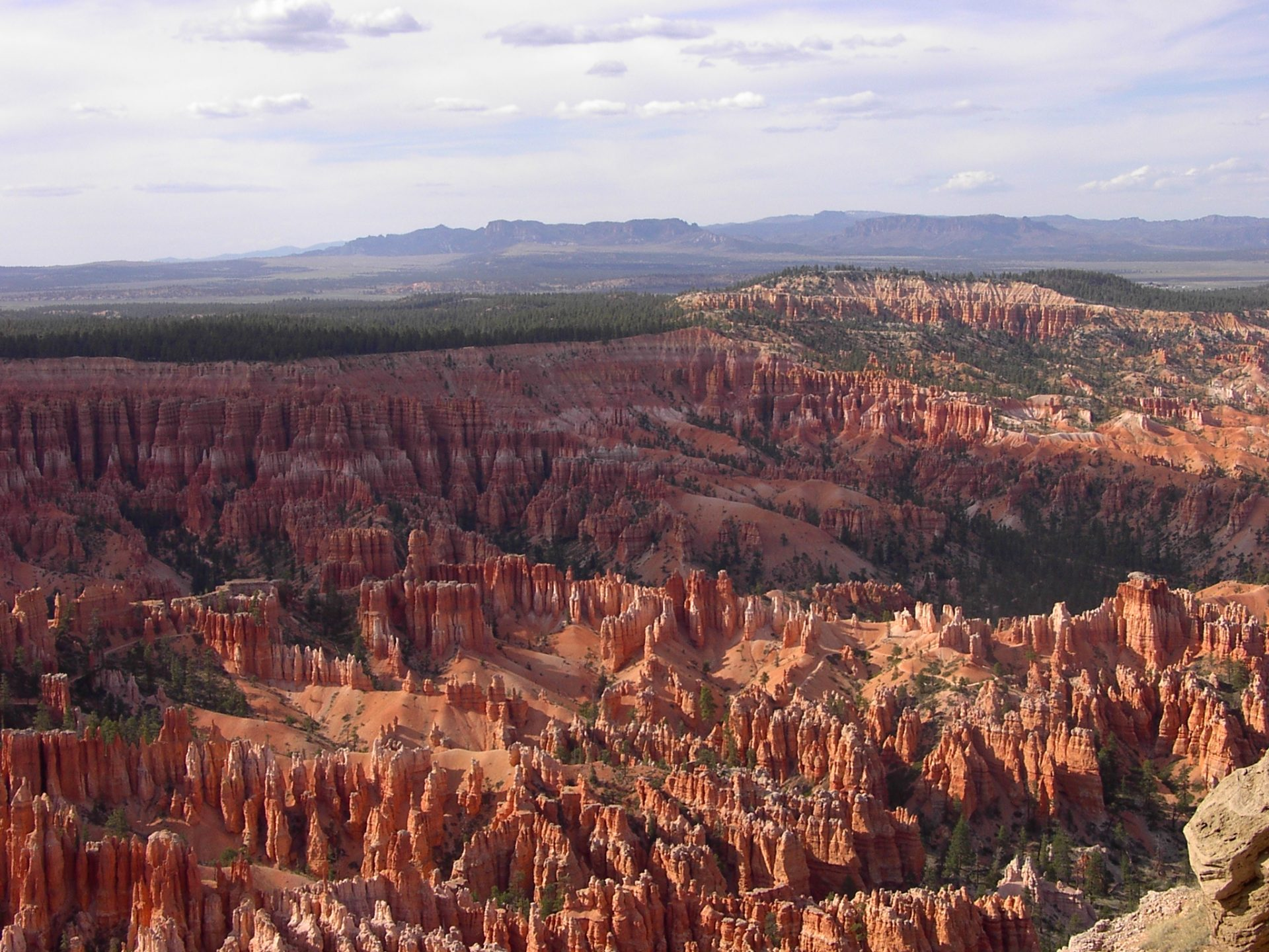 A field of towering red rocks in Bryce Canyon National Park, Utah - things to see in the American Southwest