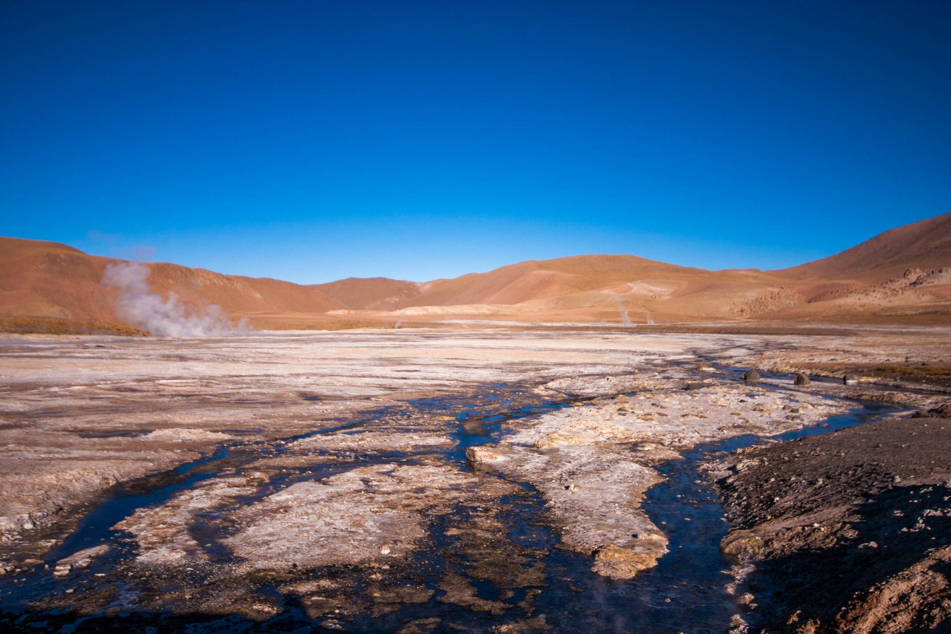 El Tatio Geyser with steam plumes in the distance.