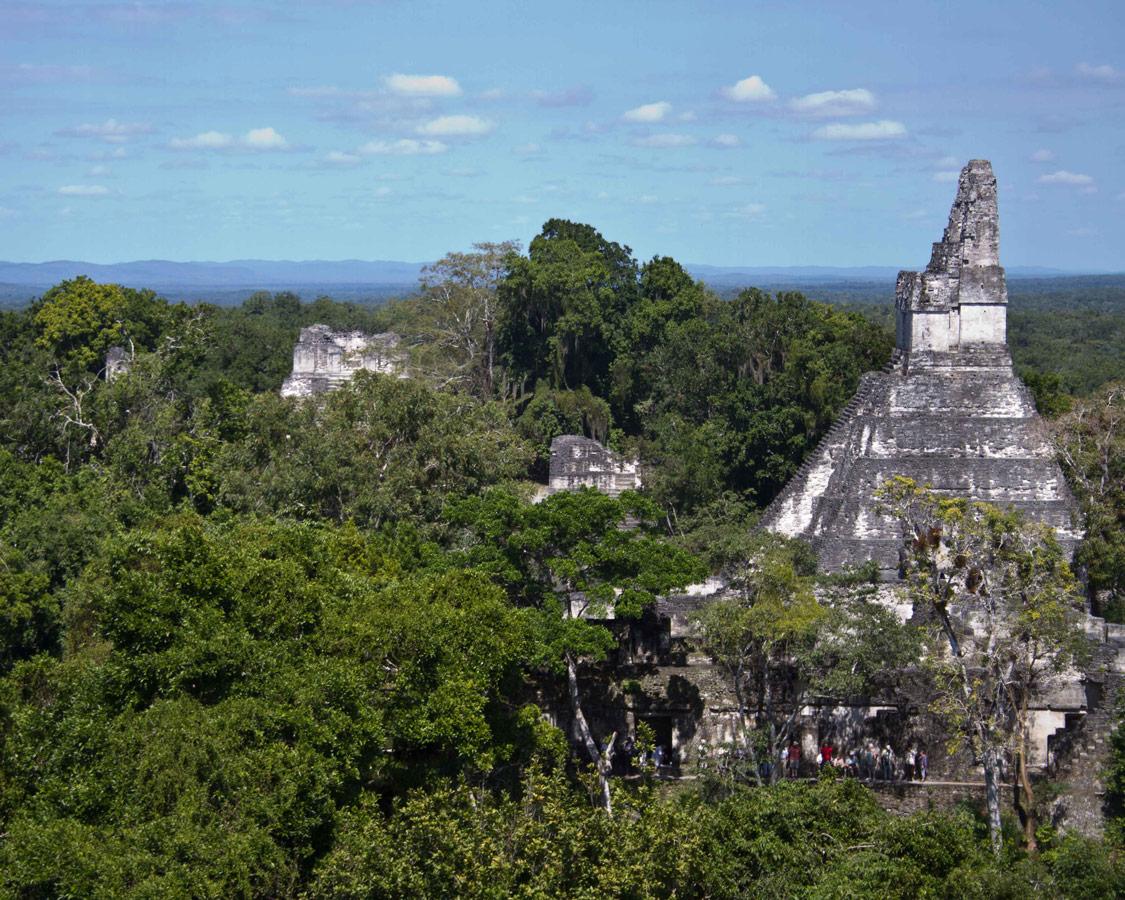 Mayan pyramids rise above the rainforest's of Guatemala