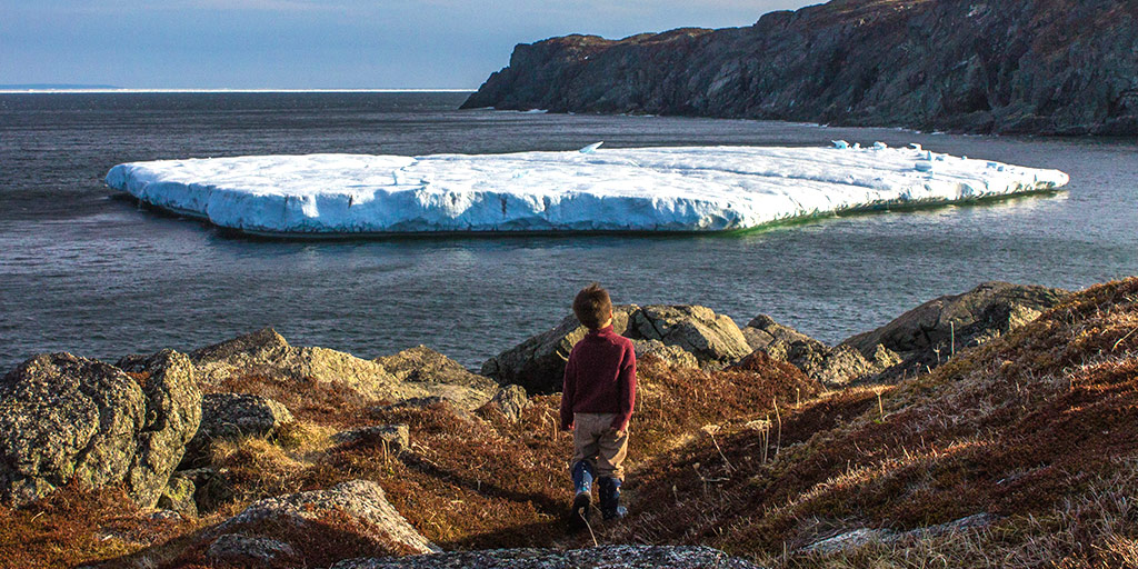 This is why you should take a trip to St Anthony Newfoundland
