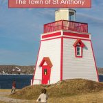 St Anthony Newfoundland is a sleepy fishing town on the northern tip of western Newfoundland. But this small town hides a bounty of exciting attractions. And visiting St Anthony during the summer months gives visitors the chance to see one of the world's most spectacular natural attractions.