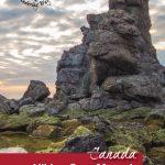 Hiking Green Gardens in Gros Morne National Park - Pinterest