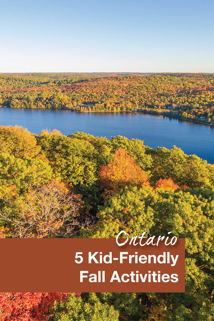 5-kid-friendly-fall-activities-pinterest