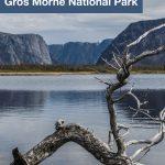 Exploring Western Brook Pond in Grose Morne National Park - Pinterest