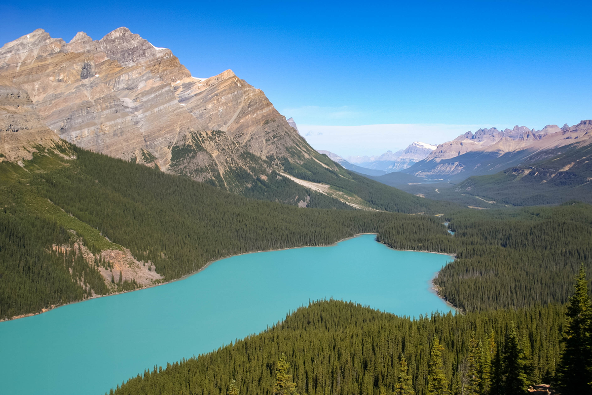 A snow-capped mountain range looming over a green forest and an emerald blue lake as viewed from Bow Summit on the Icefields Parkway. An Unforgettable Canadian Road Trip