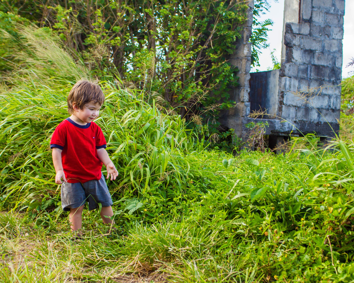A young boy in a red top walks through tall grass towards the ruins of a small house near Lake Antoine, Grenada