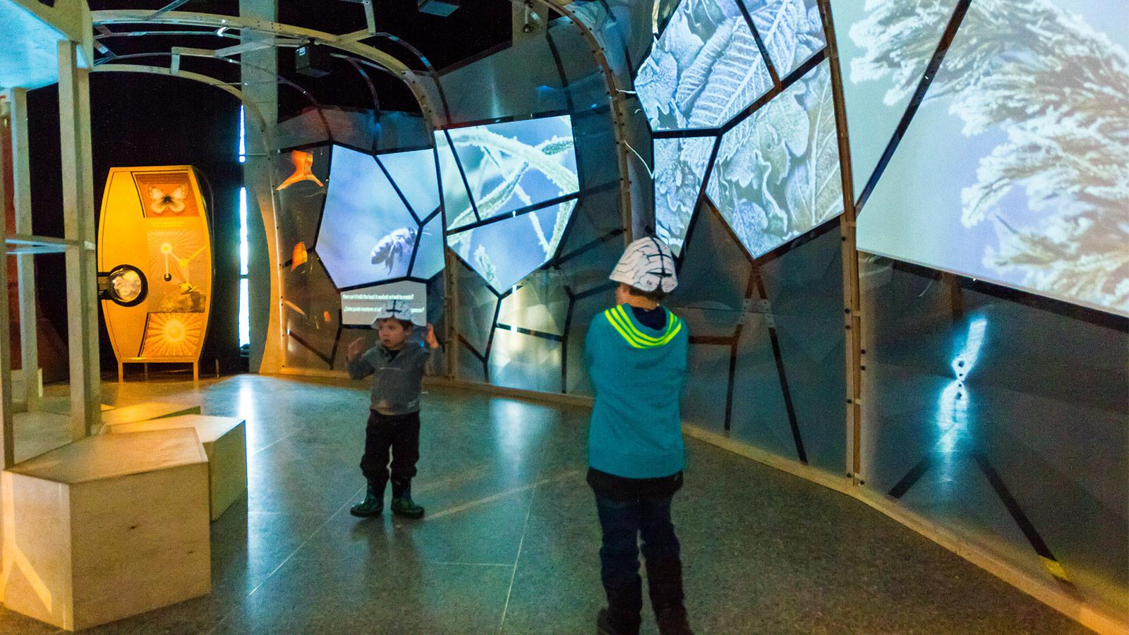 Ontario Science Centre Exhibits