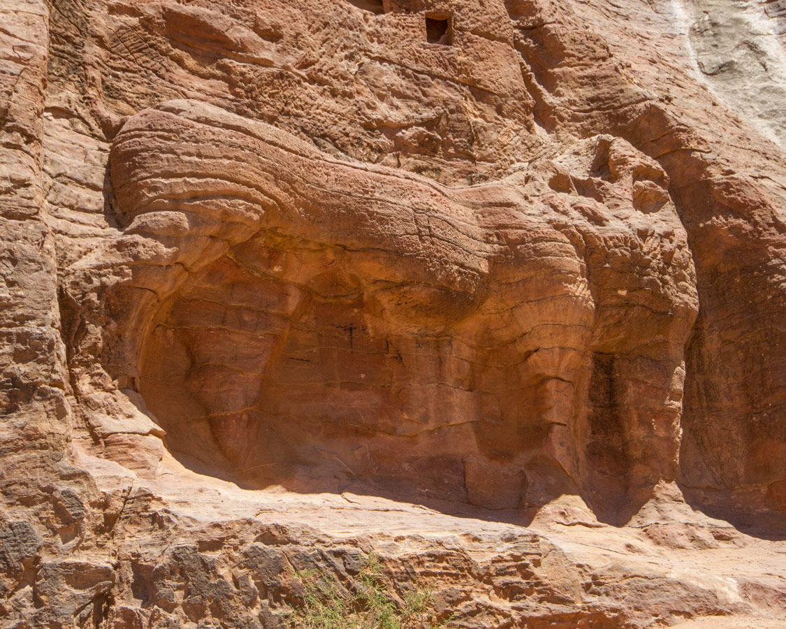 The faded remains of a lion on the walls of a gorge in Petra Jordan