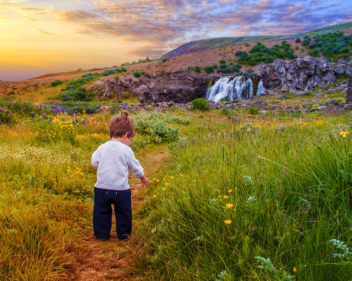 Hikes in Iceland Hiking with kids in Iceland through fields of flowers and waterfalls