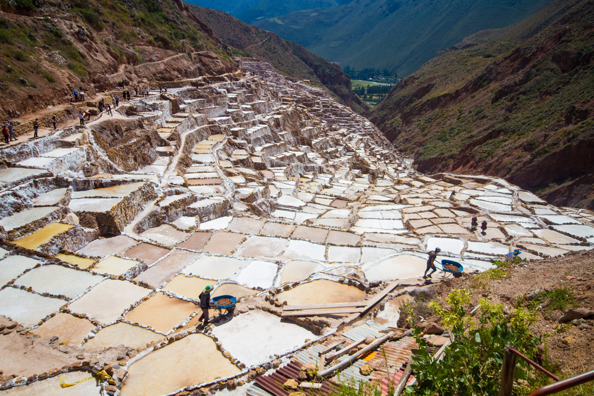 Workers push wheelbarrows across narrow ledges as they repair the salt pans of Maras Peru