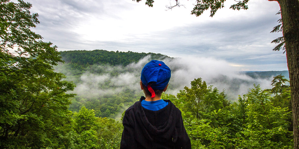 Boy looking over the gorge at Letchworth State Park