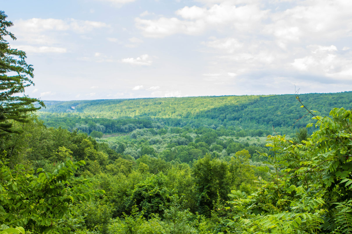 A tree covered valley under blue cloudy skies from Gardeau Lookout in Letchworth State Park in New York State