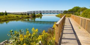 Things to do on Manitoulin Island