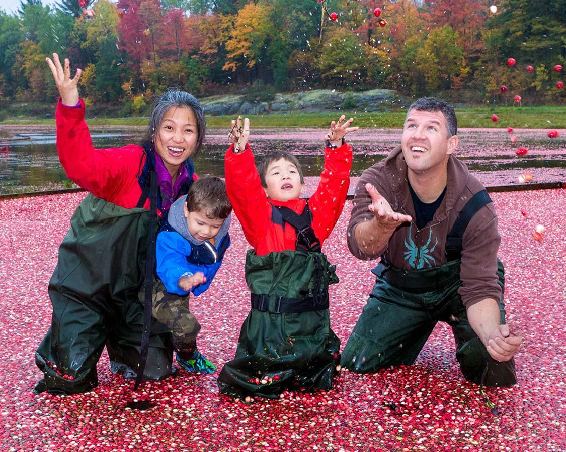 Celebrating at Johsons Cranberry Marsh during the Bala Cranberry Festival
