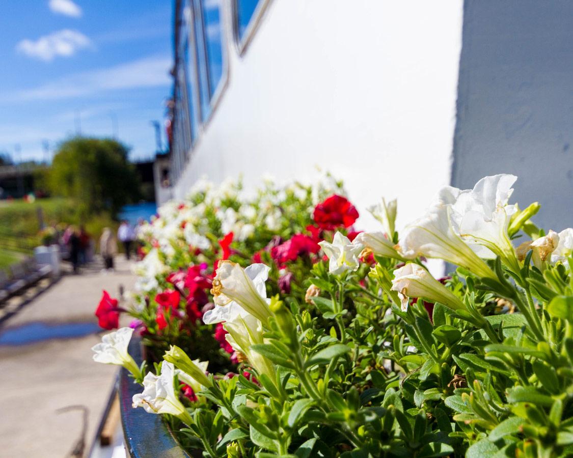 Flowers adorn the upper deck of the Lady Muskoka cruiseship in Bracebridge Ontario
