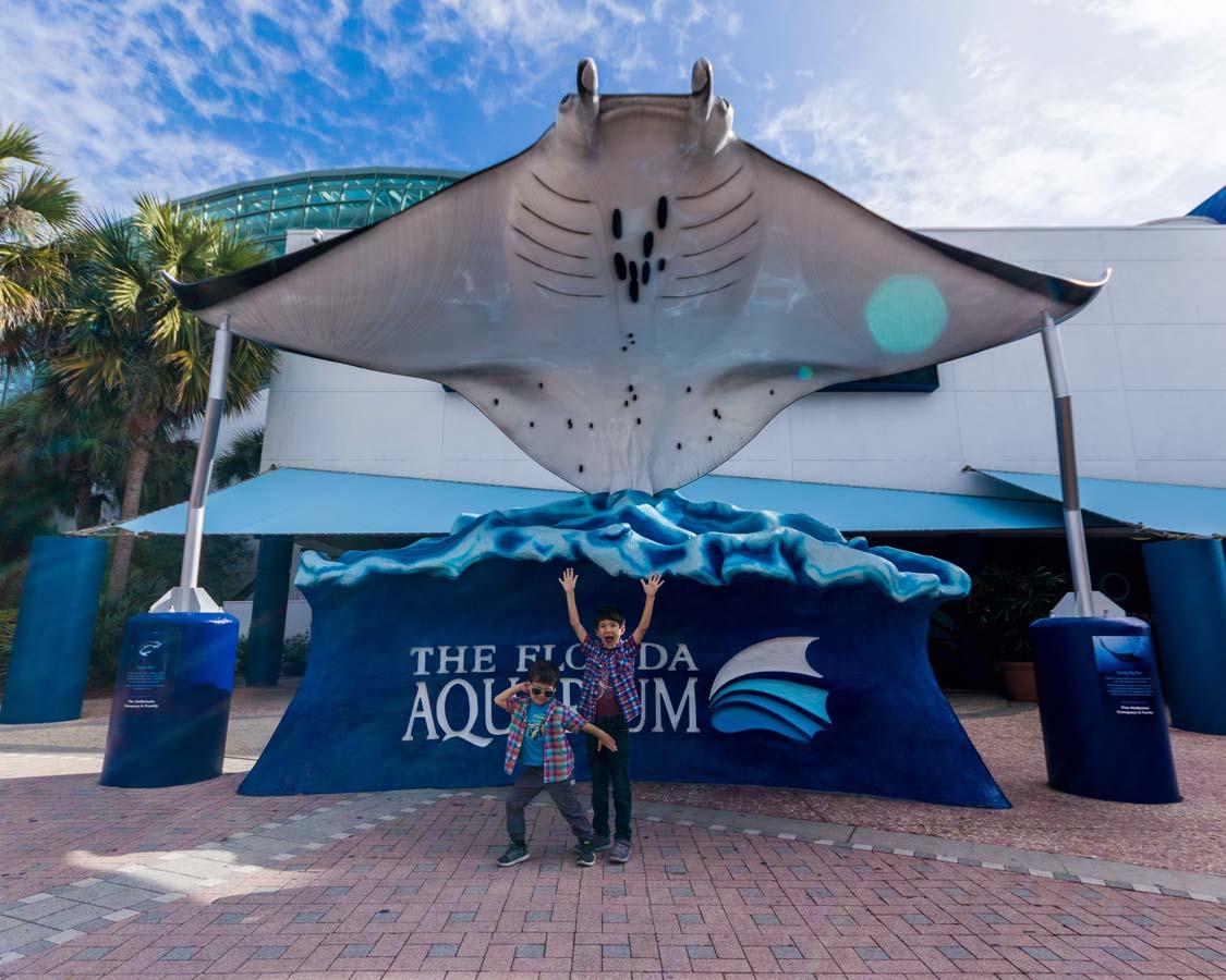 Two boys celebrate outside the Florida Aquarium in Tampa Florida