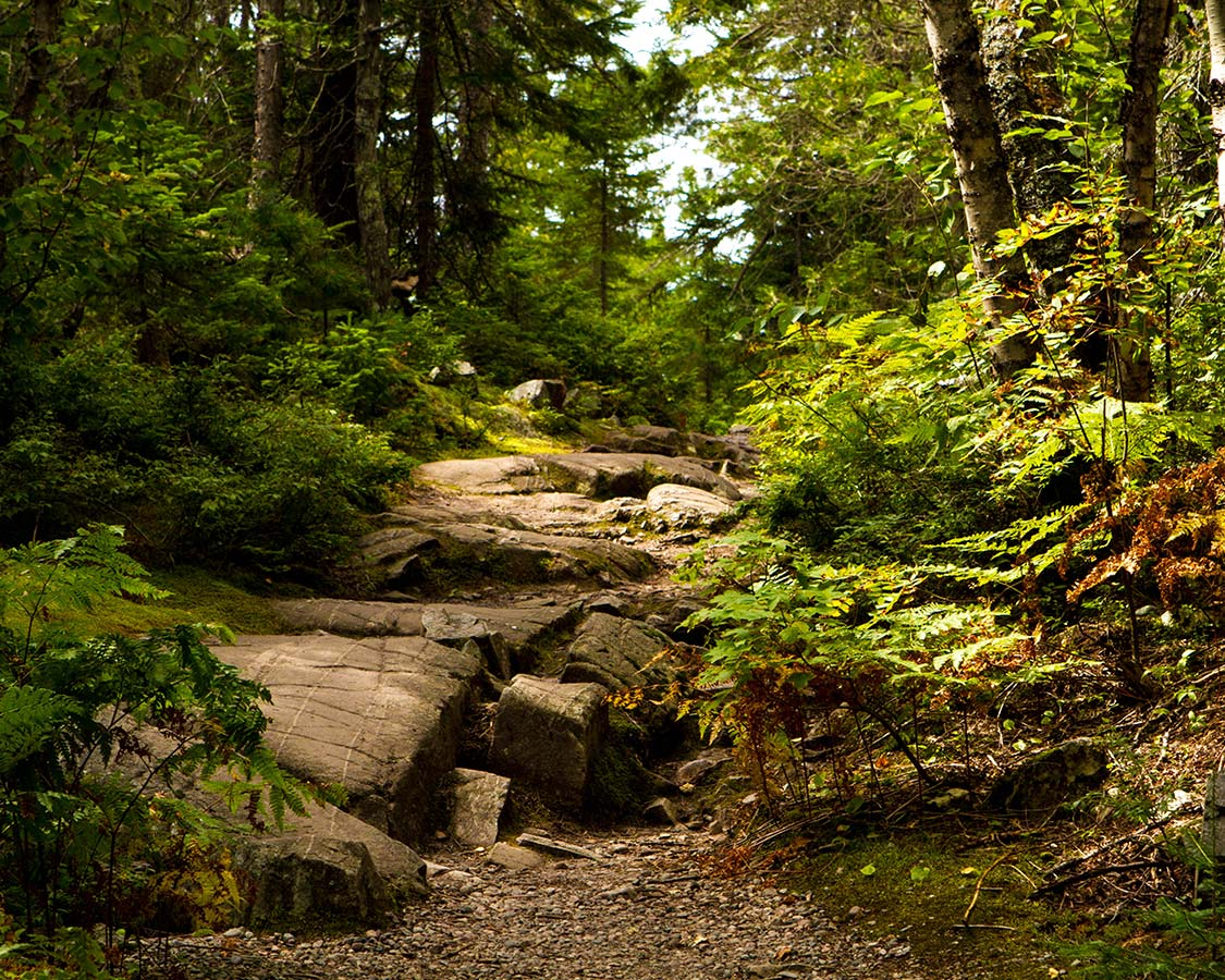 Things To Do In Lake Superior Provincial Park Coastal Hiking Trail