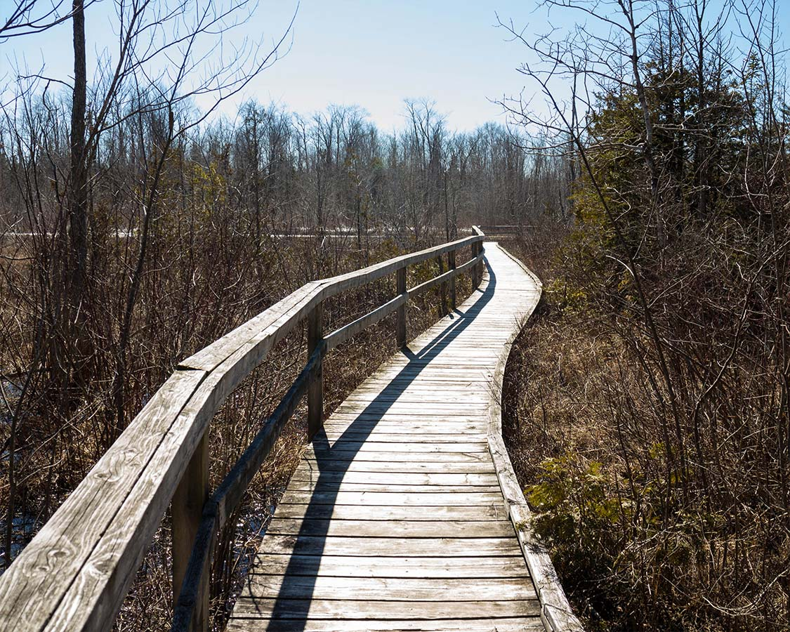 MacGregor Provincial Park Hiking