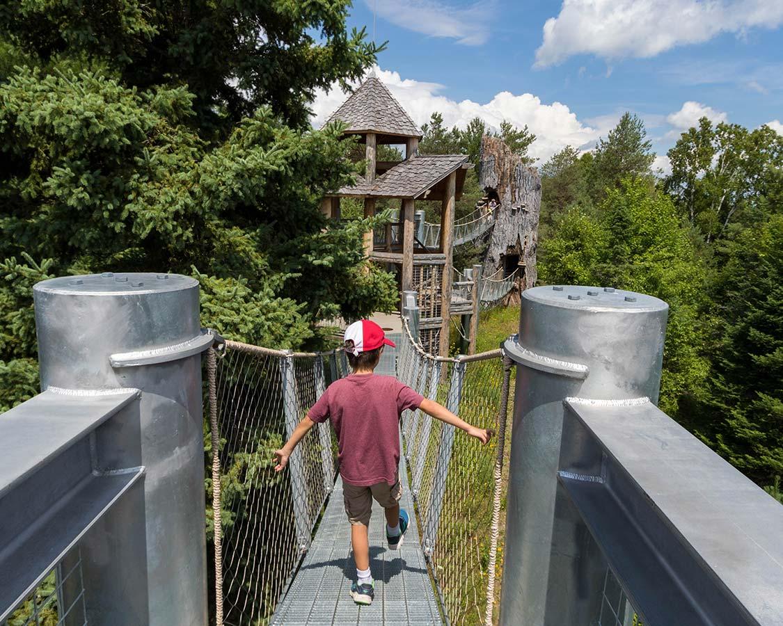 Wild Walk Tree House at Wild Center Tupper Lake NY
