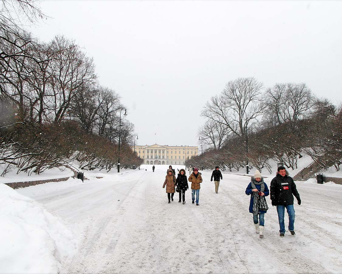 24 hours in Oslo Royal Palace