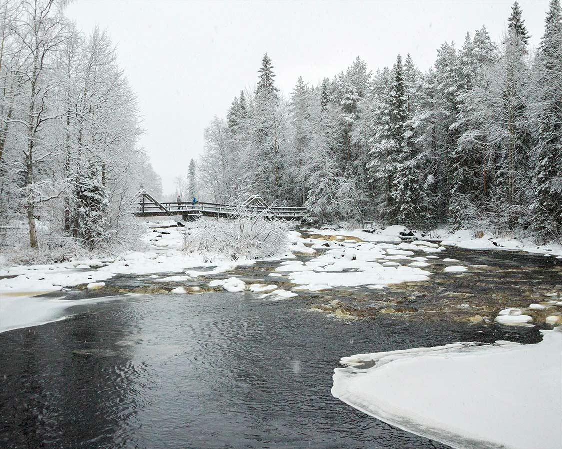 Things to do in Rovaniemi Finland Arctic Circle Hiking