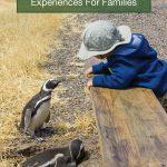 Family friendly wildlife experiences