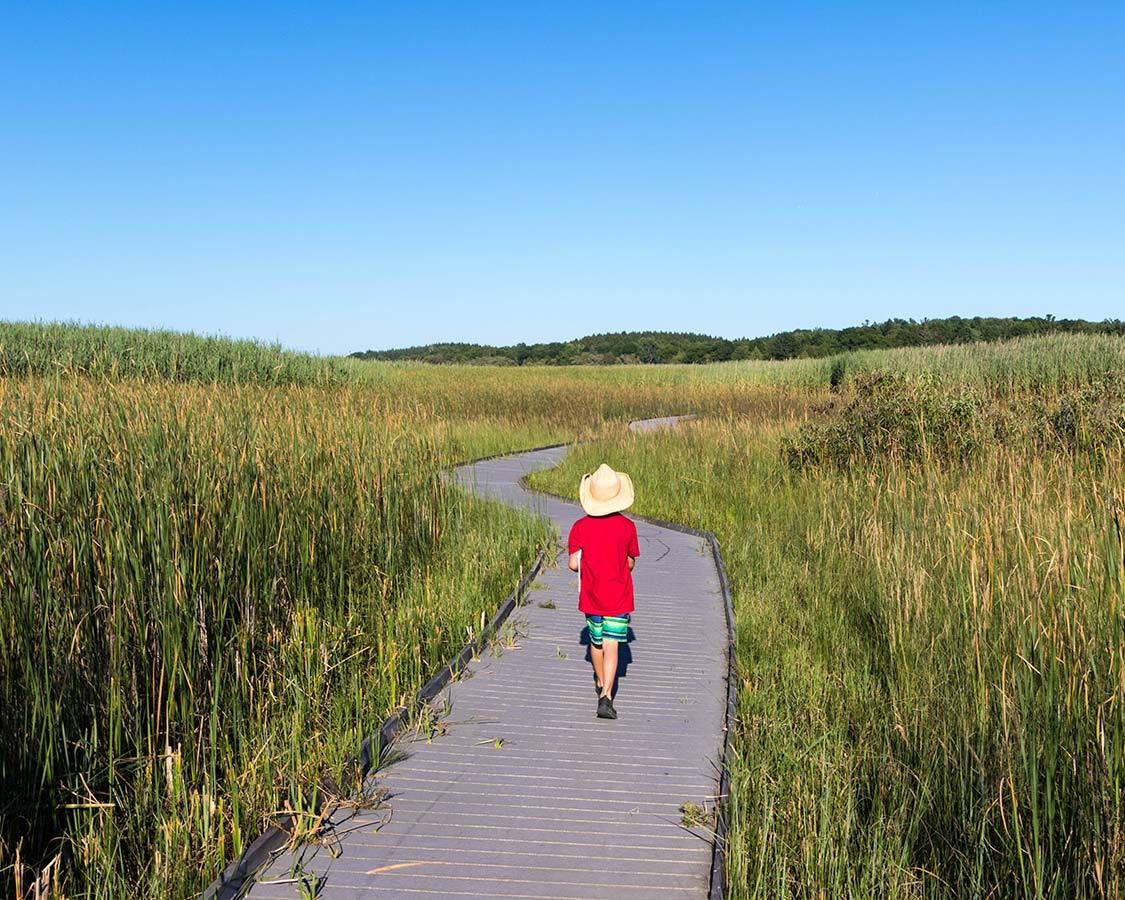 Presqu ile provincial park with kids marsh boardwalk