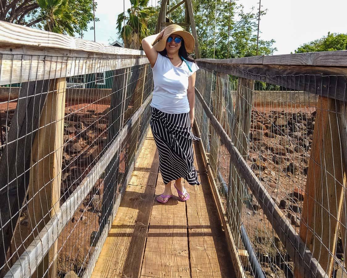 Hanapepe Swing Bridge in Kauai with kids