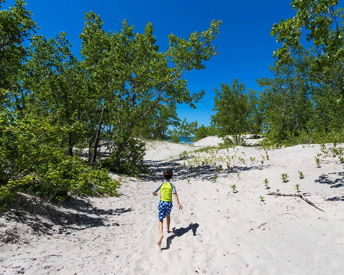 Sandbanks Dunes Beach