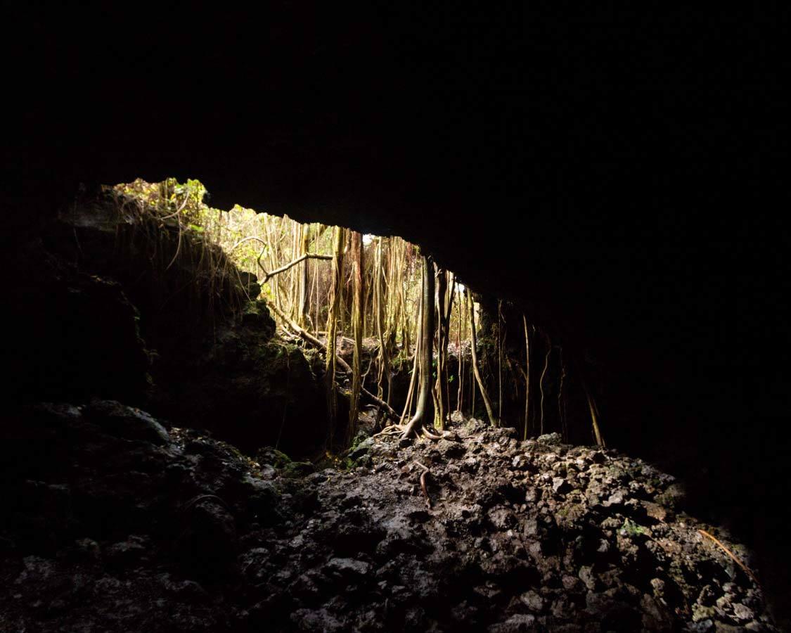 Hana Highway lava tube