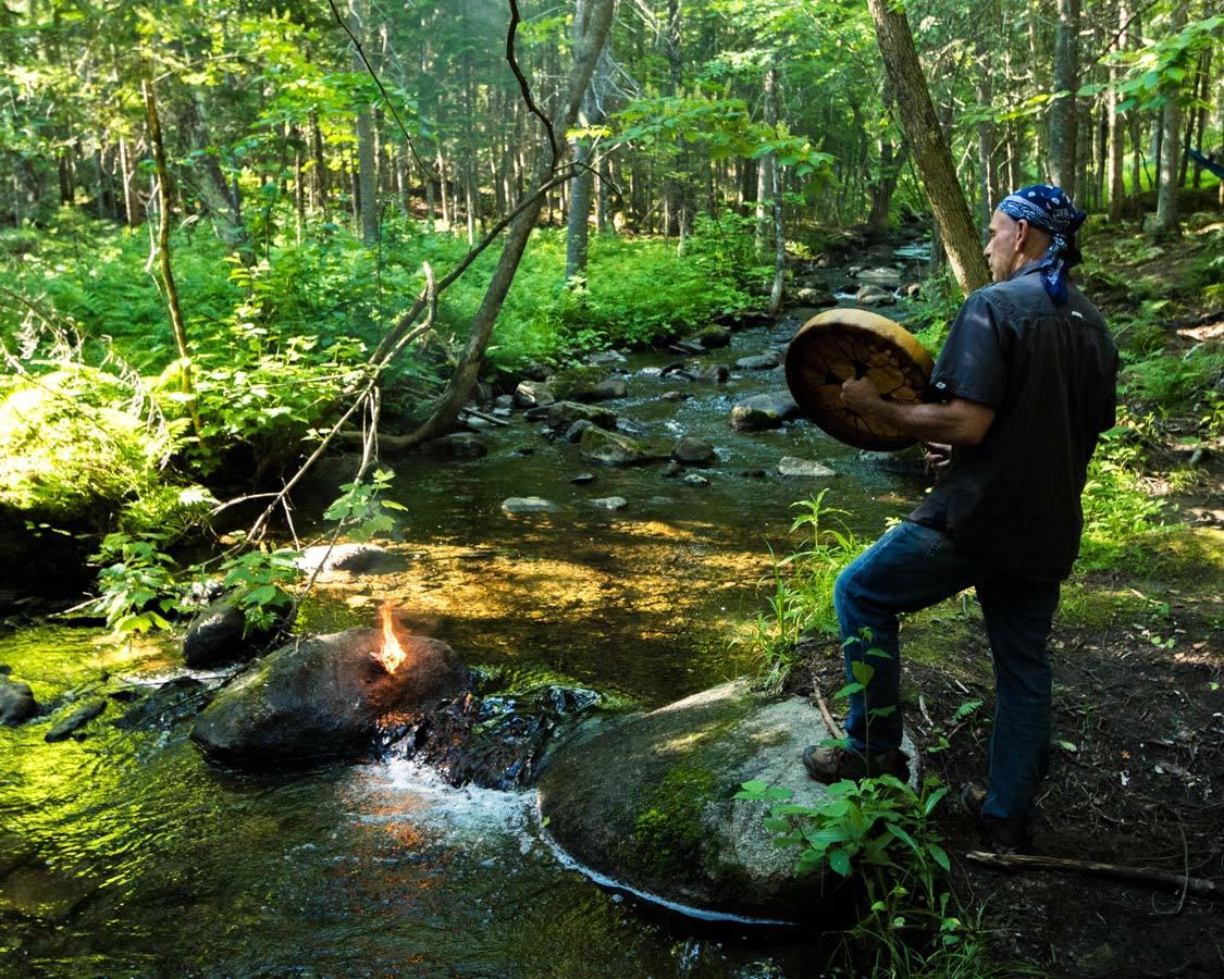 Piopolis Forest Walk Hebergement Aux Cinq Sens