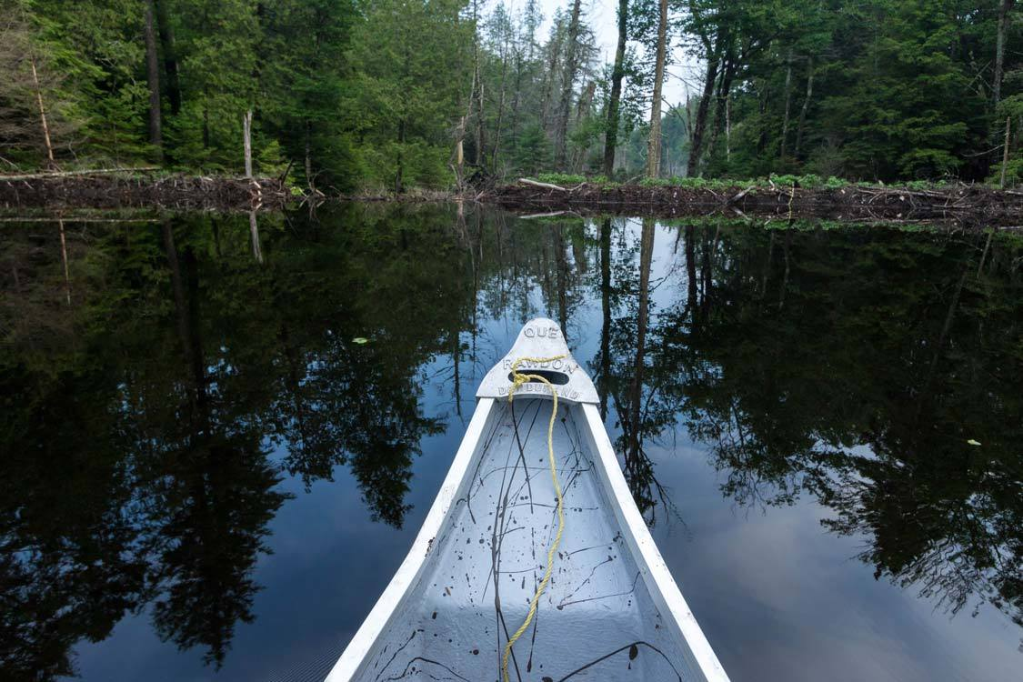 Beaver Dam at Amishk Adventures Quebec