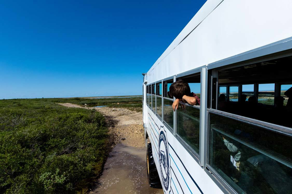 Tundra Buggy Tour Guide To Churchill Manitoba