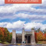 Fall colours in Peterborough