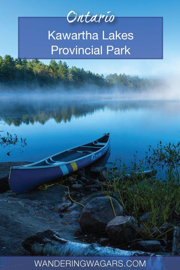 Camping Kawartha Lakes Provincial Park