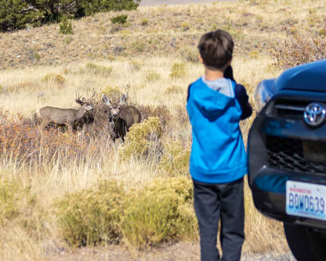 Colorado for families in Rocky Mountain National Park