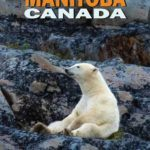 What to do in Manitoba