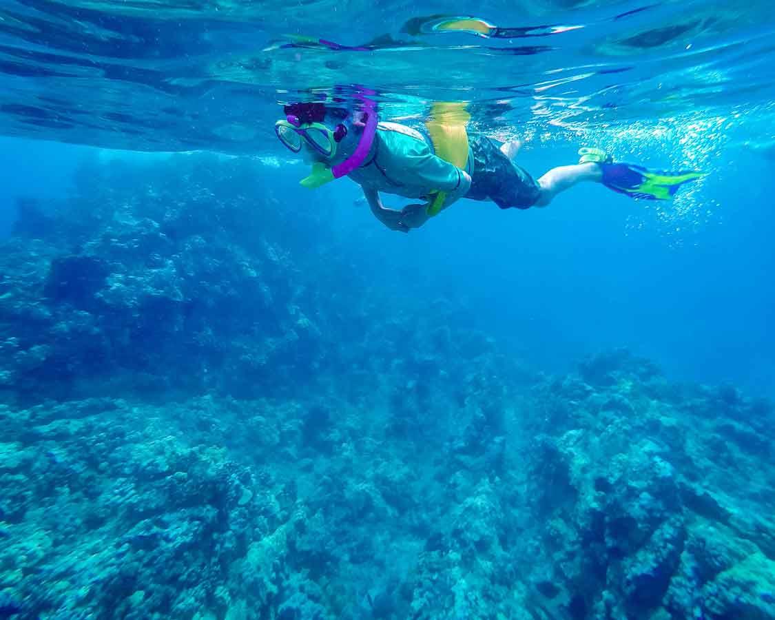 Wandering Wagars Snorkeling in Hawaii