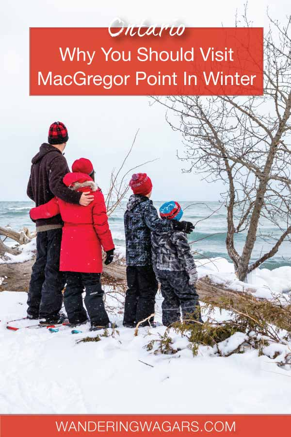 Why You Should Visit MacGregor Park In The Winter