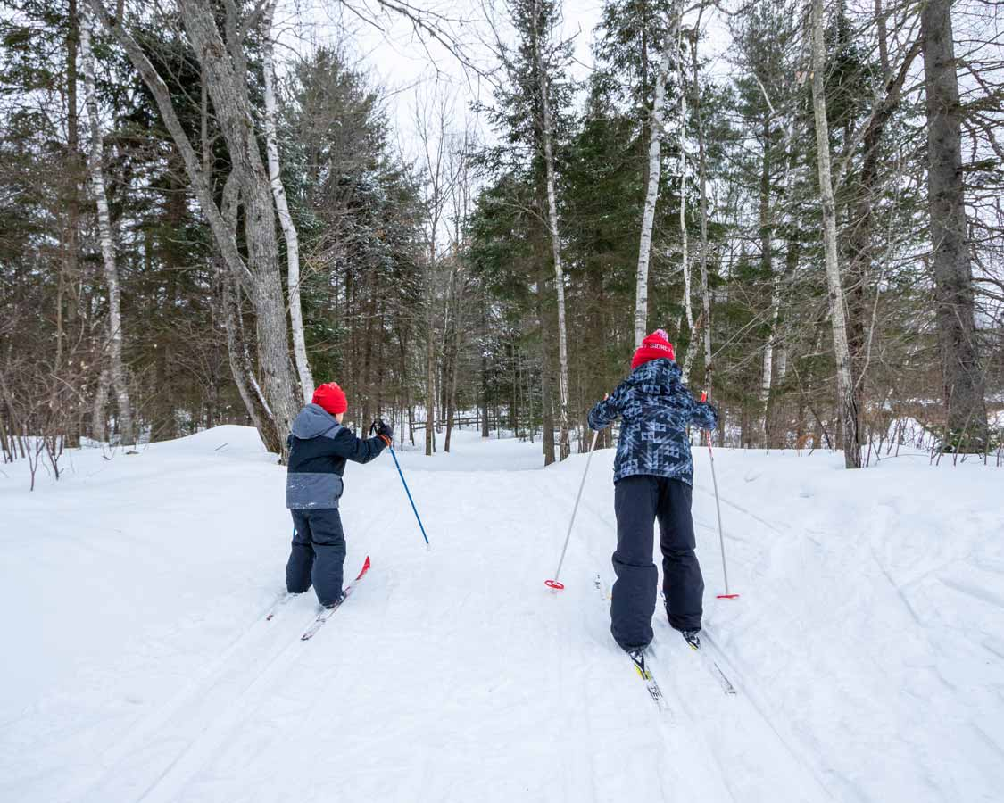 Young boys cross-country skiing at MacGregor Point during winter